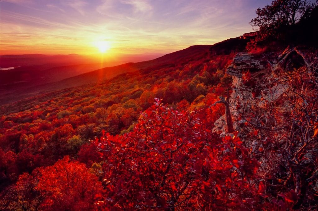Sun setting over red leafed trees on side of mountain